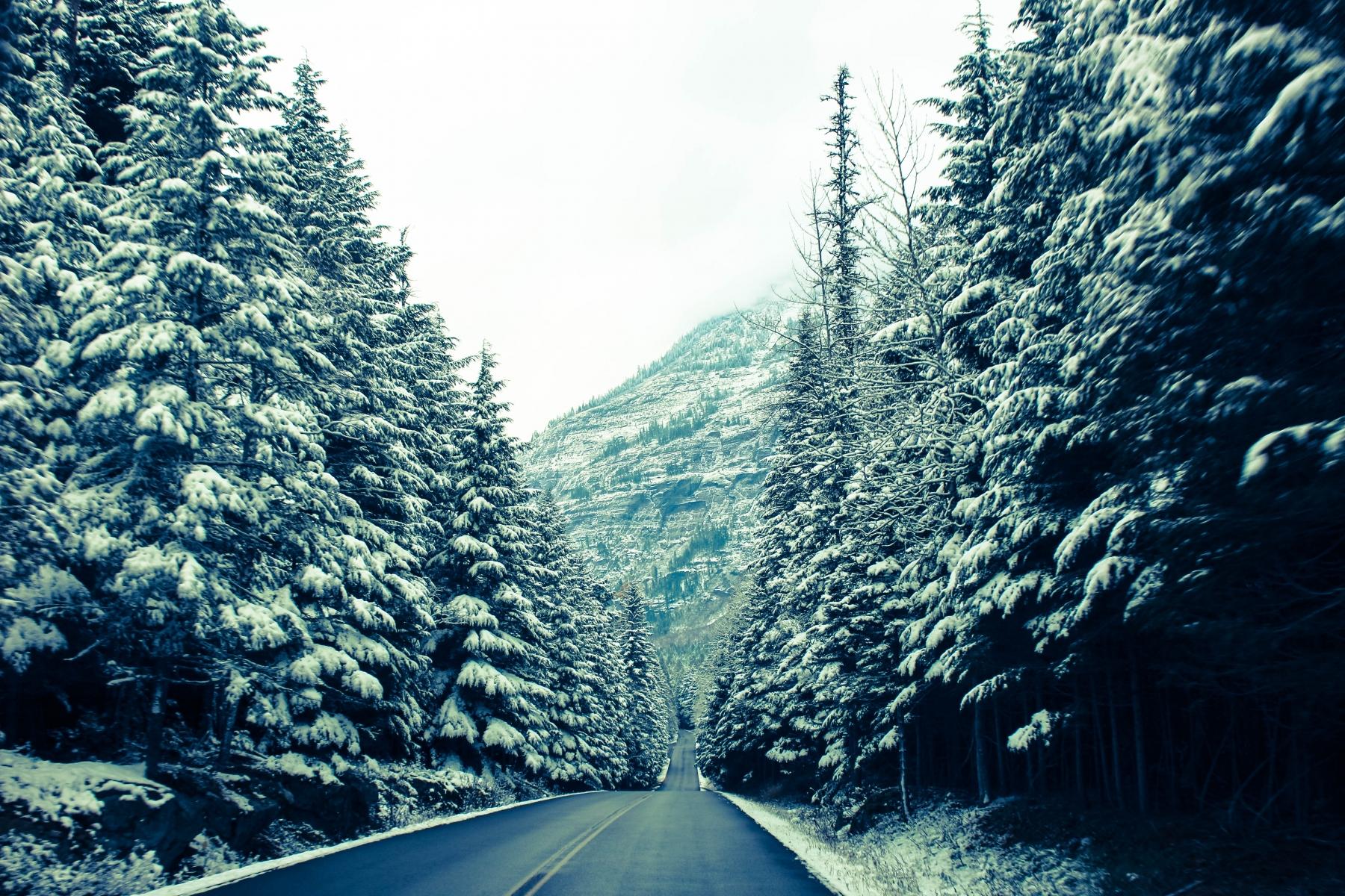 Cool Morning Run Through the Mountains