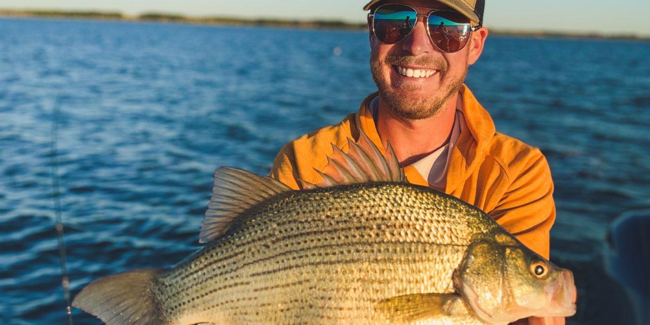 Big Devils Lake White Bass