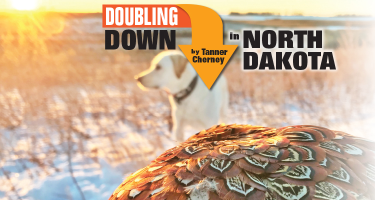 Doubling Down in North Dakota