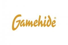 gamehide