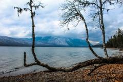 Montana Mountain Lake Picnic Spot
